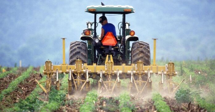 Setting Victorian Agriculture Up for Growth and Change