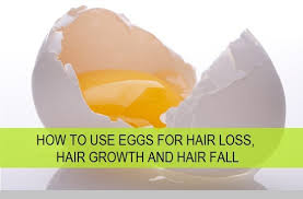 eggs for hair
