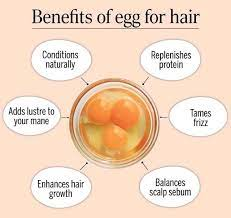 egg for hair