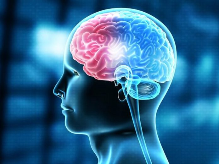 Optimal Blood Pressure Helps Our Brains Age Slower: Study